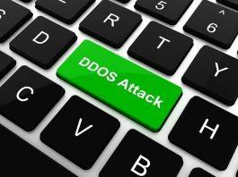 [DDOS] UDP Flood by Paradoxuh