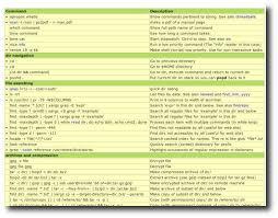 Các lệnh cơ bản dành cho VPS và Máy chủ Linux