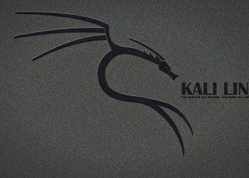 Hướng dẫn sử dụng Kali Linux 12