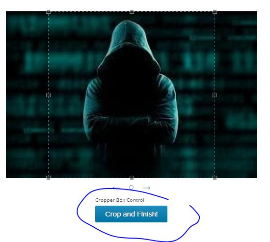 Dùng Gravatar đặt ảnh đại diện cho Comment trong AnonyViet 36