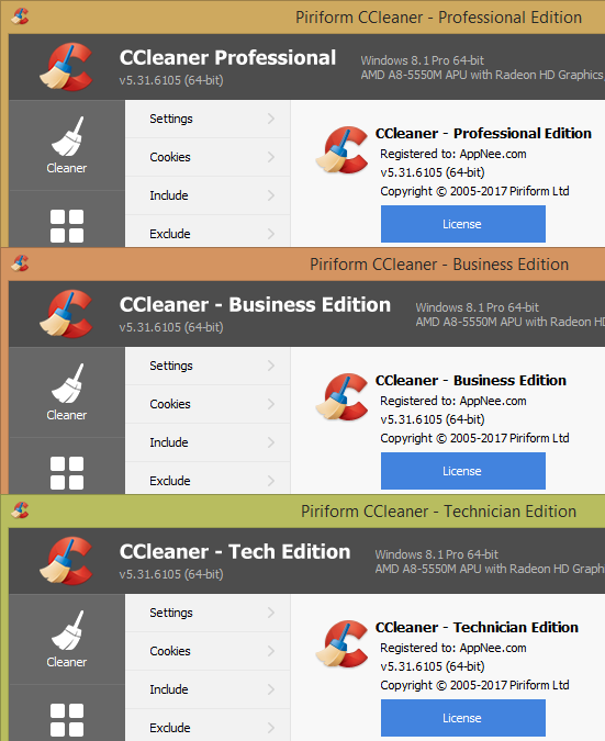 CCleaner Professional Business Technician Portable 2 - CCleaner Professional Plus, Business & Technician Edition Portable Full