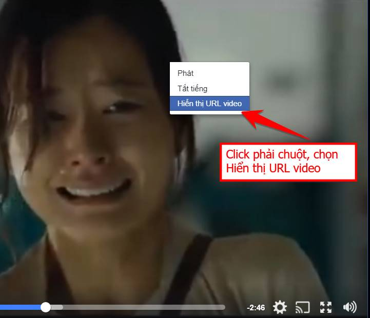urlvideo - Cách Download Video Facebook ở Nhóm kín