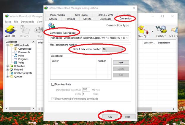 3 17 - Mẹo sử dụng phần mềm Internet Download Manager hiệu quả