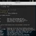 SQLMap v1.2.9 - Công cụ khai thác lỗ hổng SQL Injection mạnh nhất 5