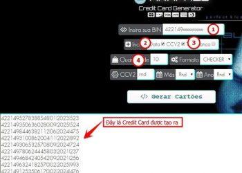 BIN là gì? Cách tạo BIN cho Credit Card để thanh toán Online miễn phí 1
