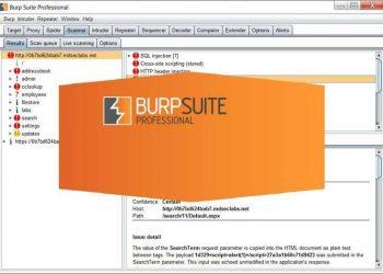 Download Burp Suite 2020.12 Pro Full Key - Cách Active bản quyền 6