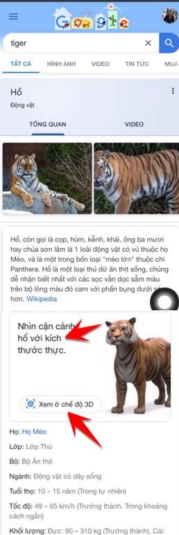 Cách xem ảnh 3D động vật bằng Google 3D animals và AR Object ngoài môi trường thật 6