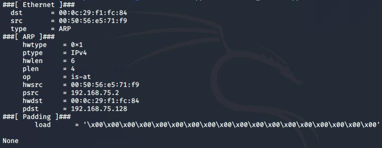 [PyHack] Bài 3: Network Scanner - Quét thông tin mạng 159