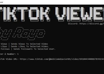 hack view tiktok