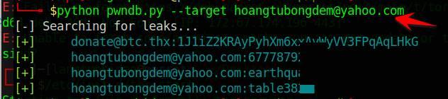 Cách xem Password bị lộ của Email hoặc Username bằng PWNDB 4