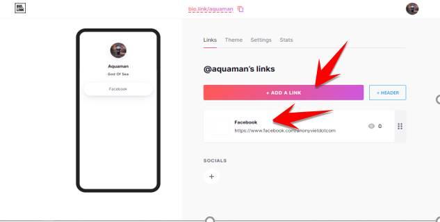add link bio link