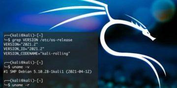 Kali Linux 2021.2 mới phát hành, bổ sung thêm 2 Tool mới