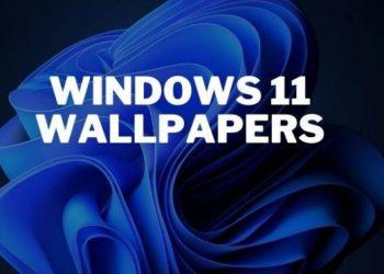tai hinh nen windows 11 dep