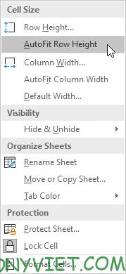 Chọn AutoFit Excel