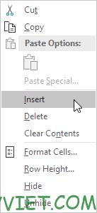 Chọn Insert Excel