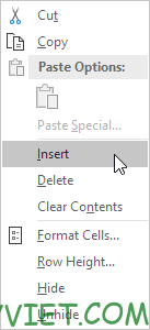 Click insert Excel