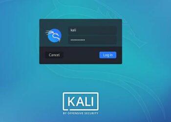 kali linux doi user root