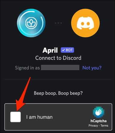 Cách tạo Bot trong Discord 63