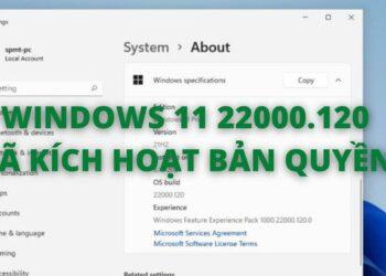 WINDOWS 11 22000.120