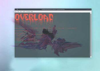 Cách DDoS Layer 7 bằng Overload thử sức chịu tải của Website 3