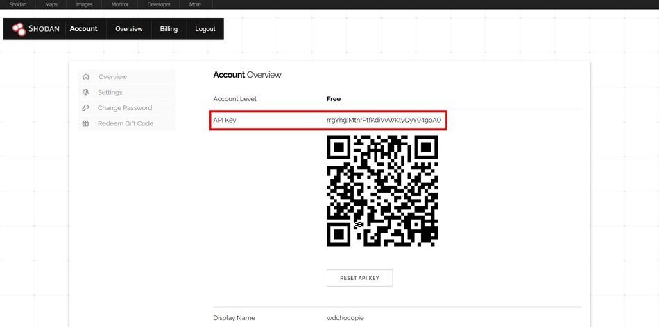 Shodan API key