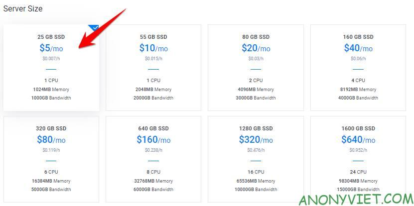 server size tang 100usd credit vultr